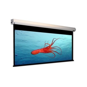 Microvision Motorized Wall Screen EWSM1717RL