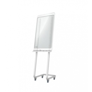 Mobile Floor Stand For SMART Kapp 42 Inch