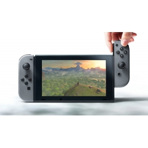 NINTENDO Switch [Japan Version] - Gray